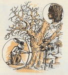 Le lievre et le baobab