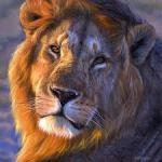 Dzata le Lion