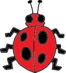 Punaise / Bug