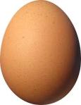 Egg / Oeuf