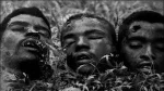Decapitated Heads during the genocide in Cameroon