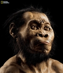 A reconstruction of Homo naledi's face by paleoartist John Gurche (Source: National Geographic)