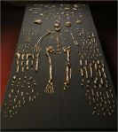 Homo naledi skeletal specimen (Source: Wikipedia)