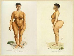 Sawtche_(dite_Sarah_Saartjie_Baartman),_étudiée_comme_Femme_de_race_Bôchismann,_Histoire_Naturelle_des_Mammifères,_tome_II,_Cuvier,_Werner,_de_Lasteyrie