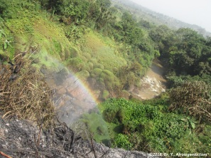 Cameroun_Chutes de la Metche_3.jpg