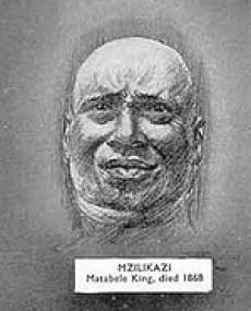 mzilikazi