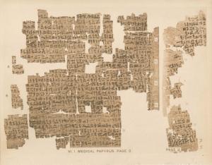 Kahun gynaecological papyrus_2