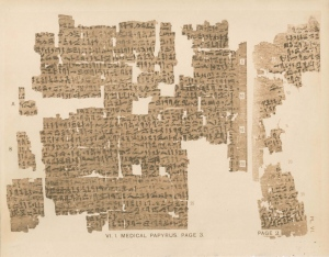 Kahun gynaecological papyrus_2