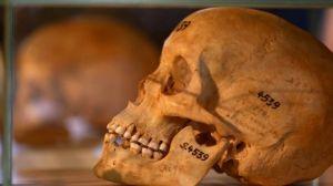 Namibia_Skulls