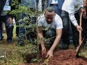Ethiopia_Prime minister Abiy Ahmed
