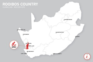 rooibos-country