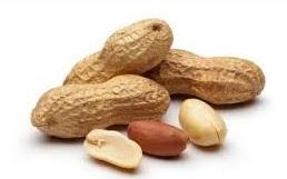 Peanut_1